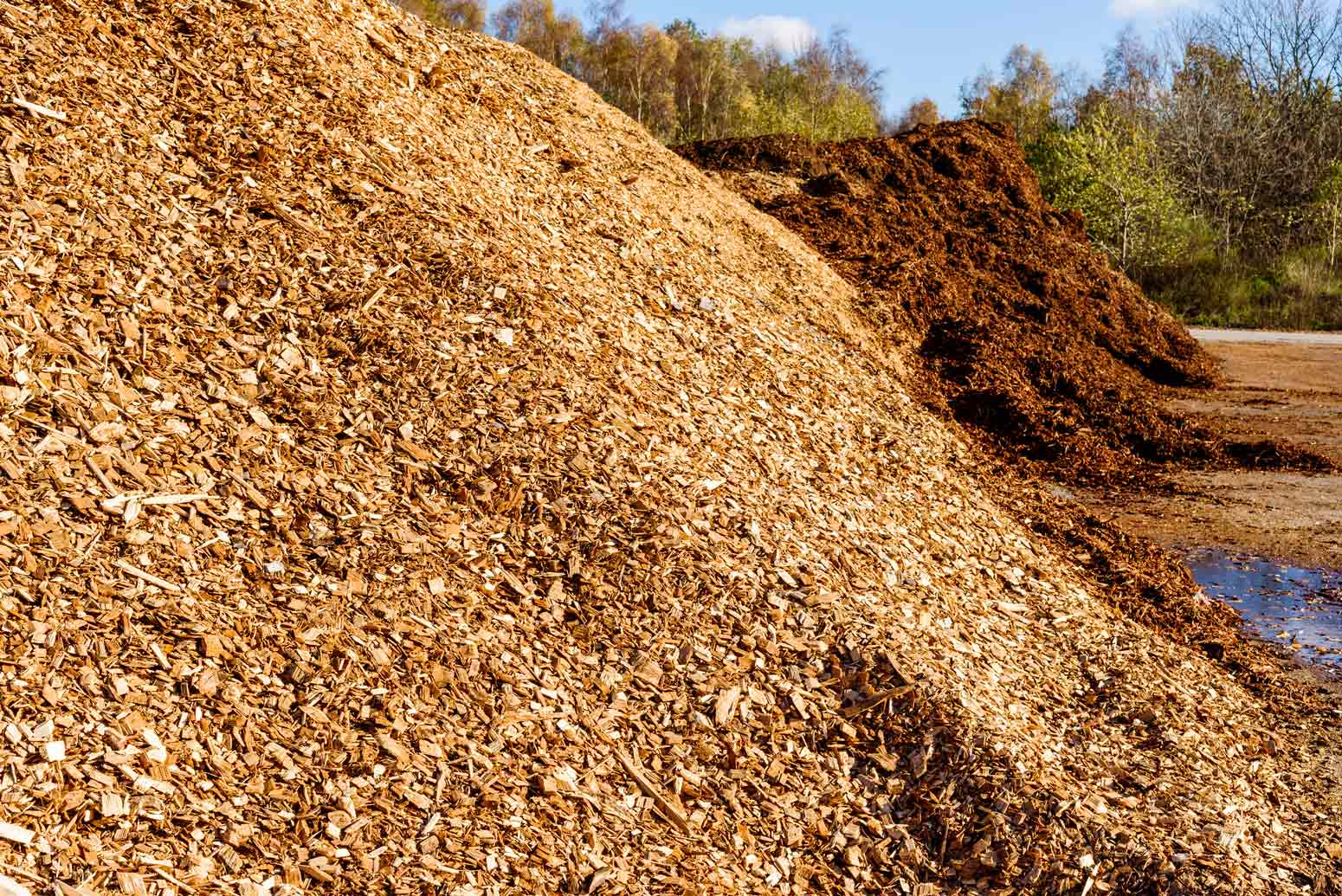 Biomass Wood Chips ~ Pro chip biofuel wood caton recycling